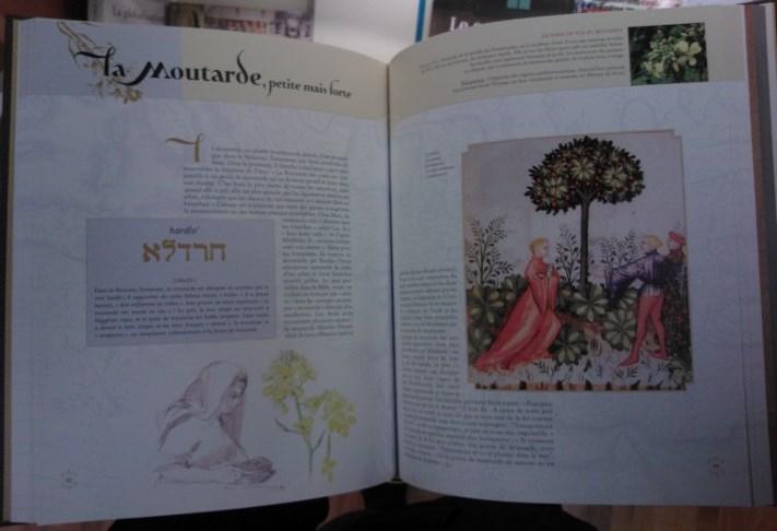 Les Plantes De La Bible Le Monde De La Bible
